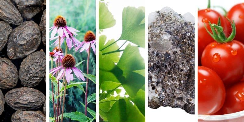 Prostomo – skład - dawkowanie